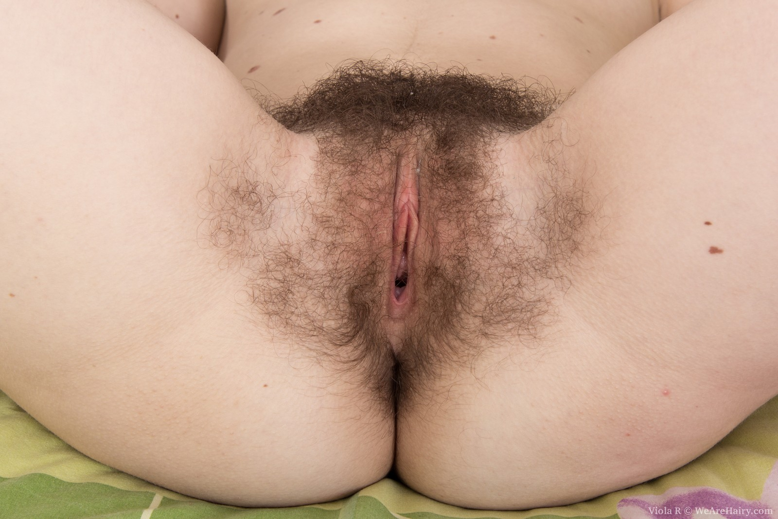 Good hairy sex